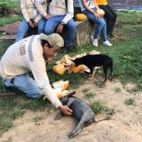 カカオ農園を訪ねて2ペルーへ