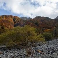大山の紅葉を楽しんできました(^^)v