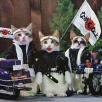 エフエム佐賀「19BOX~あの日の忘れもの~」11月25日の放送