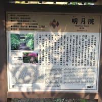 鎌倉三十三観音巡り 其の8
