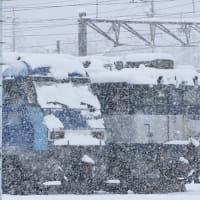 3月29日撮影 南松本にて雪が降る中、お休み中のEH200と・・