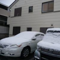 降らない地方でも初雪