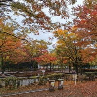 萩中公園 東京都大田区新築一戸建てビーテック