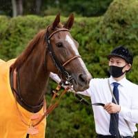 リトミカメンテ、11/7(土)武田尾特別へむけ調整