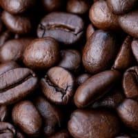 コーヒー・プランテーションのはじまり-中南米の植民地の変遷(2)
