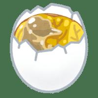 「アヒルの卵」