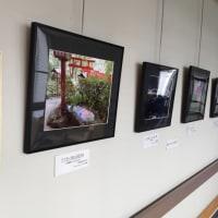 Vol.18の特設写真展示コーナー