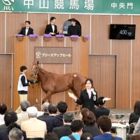 JRA競走に勝ったセール出身馬紹介(2021/5/15-16、20頭)