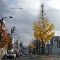 大黒屋のうどん定食 (松山市)