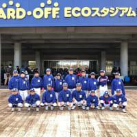 エコスタ野球祭り