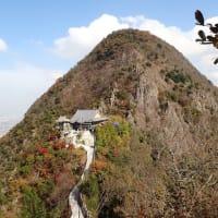 💖五岳山登山で見た花💖