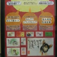 12/08 藤沢露店報告