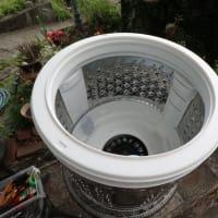 今年も洗濯機の分解大掃除です。