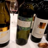 ピエモンテの白ワイン「ガヴィ」を再発見!