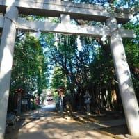朝の散歩---南コース(道野辺八幡宮コース)