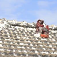 屋根瓦上の魔除けのシーサー写真NO3