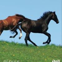軽種馬販売情報誌【クレレ(Currere)-Vol.28】が発刊!