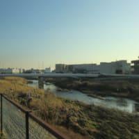 鶴見川28km走
