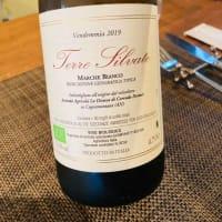 こんなワイン飲んでみません?~マルケ州ヴェルディッキオ自然派~