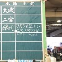 10月17日の小田原早川漁港の水揚げ状況|株式会社JSフードシステム