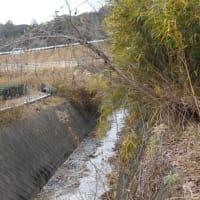 掛川の川巡り ⑬ 「東山沢川」