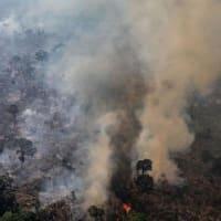 """【CNN】    11月19日18:18分、""""""""アマゾンの森林破壊が加速、過去11年で最悪のペース"""""""""""