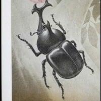昆虫ハンター