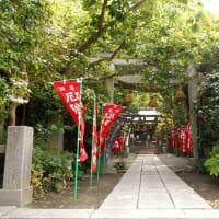 #7722 鎌倉の厄除けさん