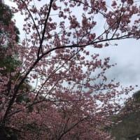 廬山温泉へ行って来ました。
