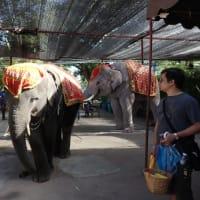 タイ バンコクへの旅③ 布製、帯締め入れ・帯締め収納ケース「優舞美」