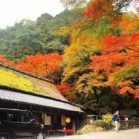 秋の京都 奥嵯峨を歩いてみませんか?嵯峨鳥居本
