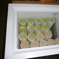毎年恒例の手作りアイスの出張販売・・・北陸馬術大会(馬事公苑)