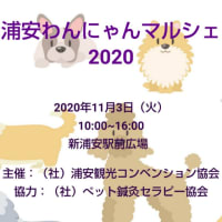 2020年11月3日(火) 浦安わんにゃんマルシェ 2020  新浦安駅前広場