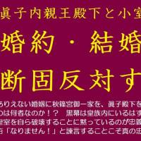 祝う必要なし!違法即位天皇誕生日。平成33年の、#天皇代行皇太子殿下 のおことば 秋篠宮御一家を守る気ゼロ!