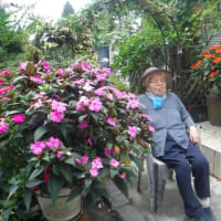 祖母、101歳の誕生日。
