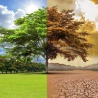 菅首相が2050年にCO2排出を実質0にする指針を発表したことについて。