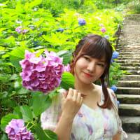 柚南みゆきと、長谷寺と、紫陽花と