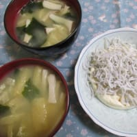 5/18さやえんどうと豚バラ肉の卵とじで夕ご飯