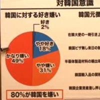 嫌韓感情を煽って参議院選挙に勝利した自民党。心配すること。