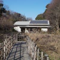 真冬の鎌倉;下見を兼ねて大船駅周辺を一回り