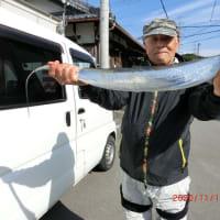 瑞宝丸で太刀魚釣りに行く。
