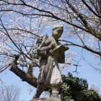 しんちゃんが卒業した、昔の小学校跡の満開の桜と金次郎・・・日本の故郷の原風景!昔の小学校は「桜」に囲まれていました・・・