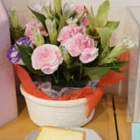 8回目のシフォンケーキの日&みーちゃん、ありがとう