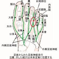 コメカミ部痛に対する内侠谿の効果 ver.1.1