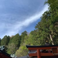 箱根神社、芦ノ湖周辺は元氣でした!