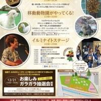 第2回箕面イルミナイト2019が開催されます!