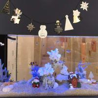 クリスマス装飾水槽レイアウト