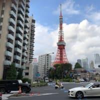 束の間の晴れ間に見る東京タワー