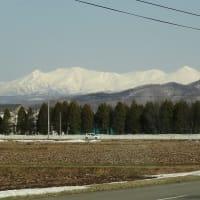 大雪山とルーミーさん🚘