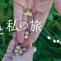 「たねと私の旅」~カナダ発10年の記録・種子の物語~上映会に参加